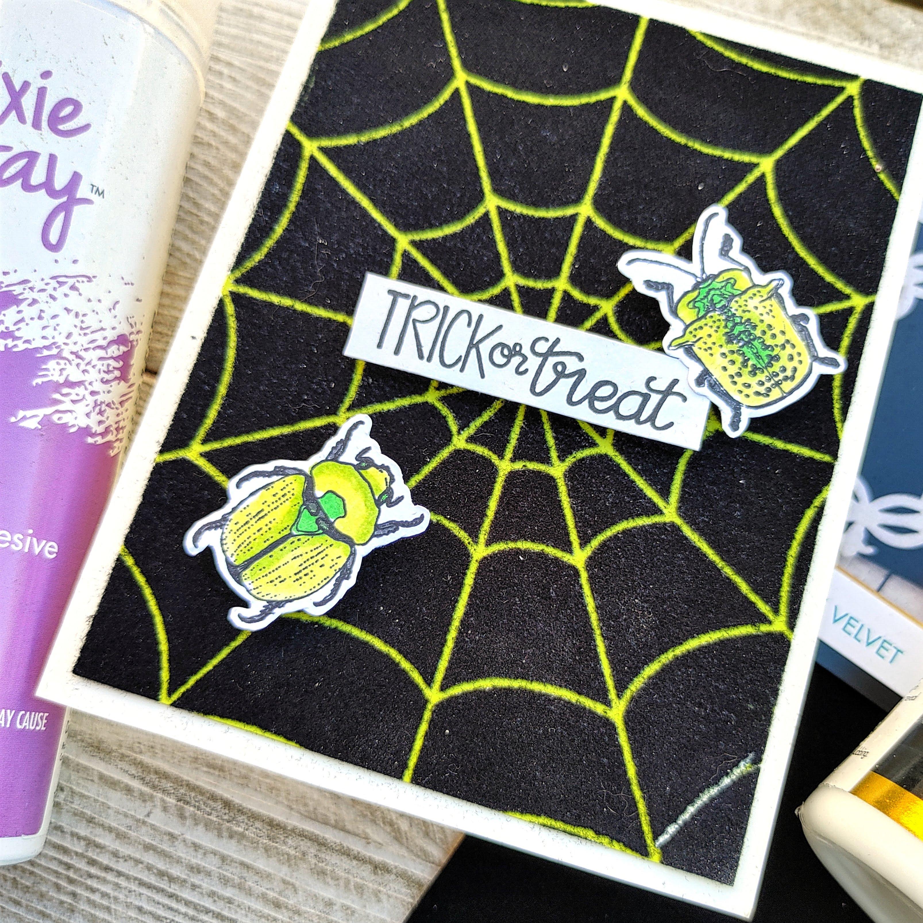 NOWM Spider 4